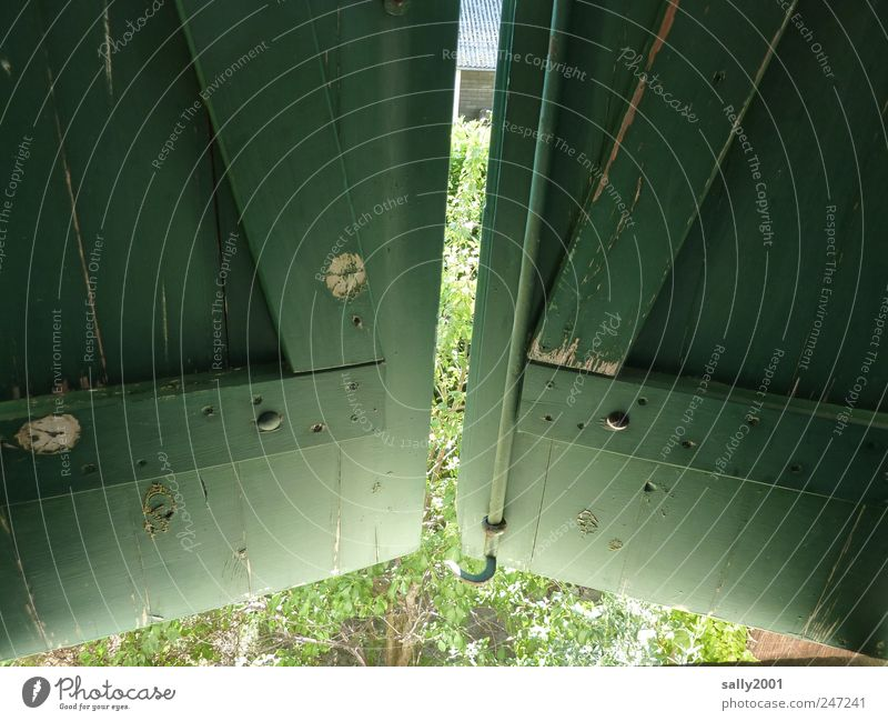 Hinter grünen Läden grün Fenster Holz geschlossen Häusliches Leben Neugier beobachten geheimnisvoll entdecken Fensterladen Hemmung