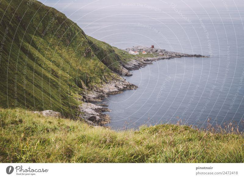 Küste von Runde in Norwegen Ferien & Urlaub & Reisen Insel wandern Natur Landschaft Wasser Horizont Gras Bucht Meer Menschenleer natürlich grün ruhig Europa