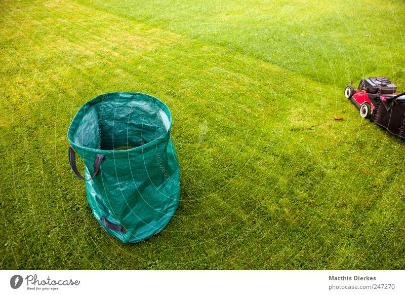 Wer die Nachbarn ärgern will... grün Wiese Spielen Garten Gras Park Arbeit & Erwerbstätigkeit ästhetisch authentisch einfach Sportrasen Grasland Gartenarbeit Sack besitzen Besitz