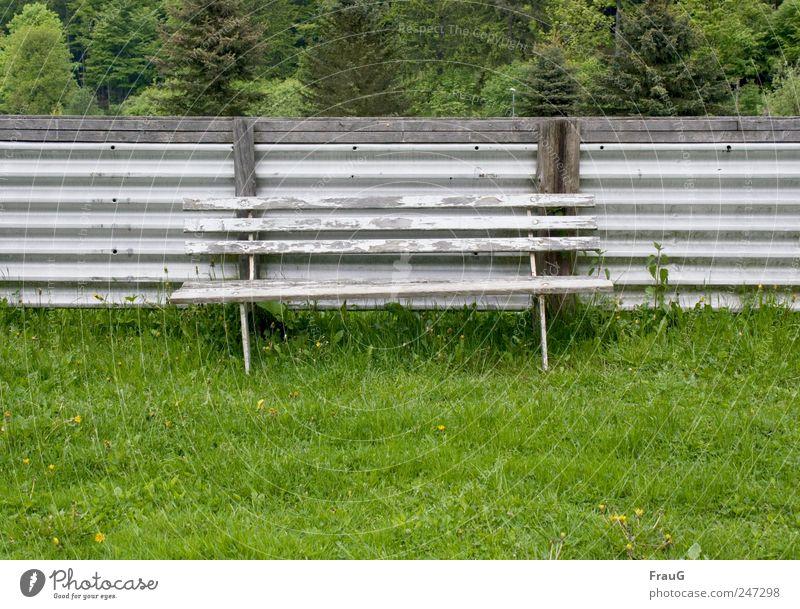 Tarnung Baum Sommer Erholung grau Gras sitzen Sträucher Bank verfallen Zaun