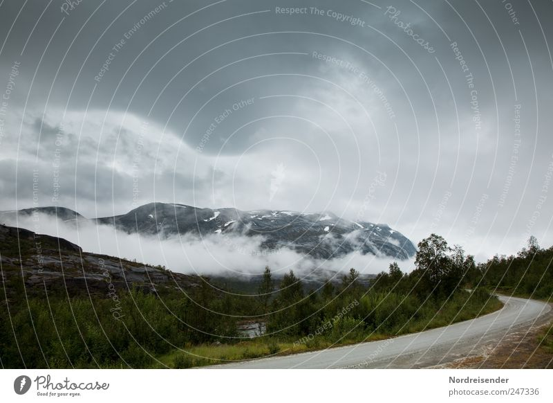 Radius Ausflug Ferne Freiheit Berge u. Gebirge Natur Landschaft Klima Wetter schlechtes Wetter Regen Wald Gipfel Schneebedeckte Gipfel Verkehr Autofahren Straße