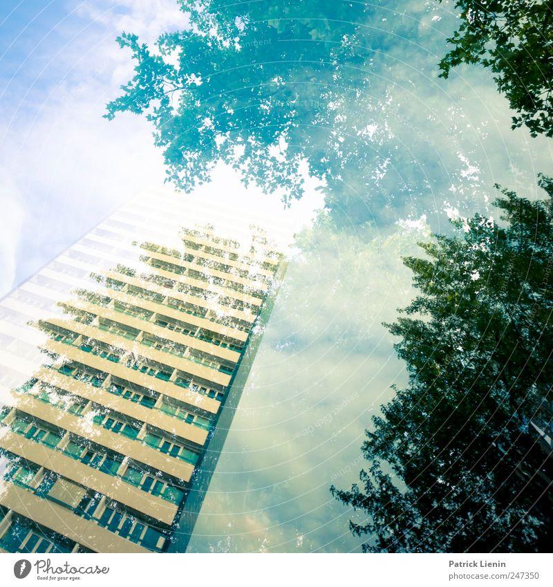 Parallelwelten Umwelt Natur Landschaft Urelemente Himmel Wolken Wetter Baum Wald Stadt Haus Hochhaus Bauwerk Gebäude Architektur ästhetisch hoch schön