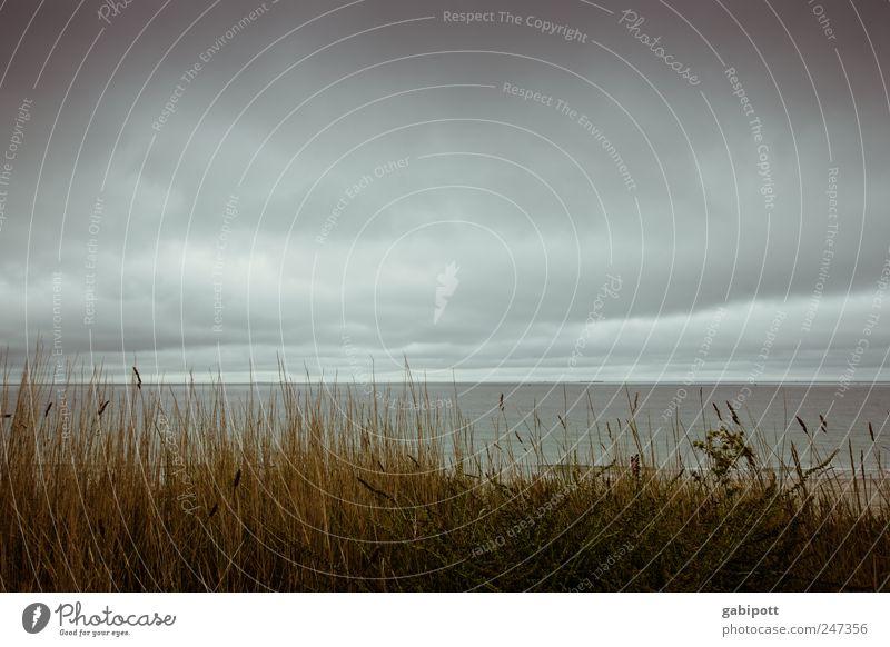 Das Wetter in der Bretagne Ferien & Urlaub & Reisen Tourismus Sommer Strand Meer Landschaft Himmel Wolken Küste Atlantik dunkel Ferne blau braun Einsamkeit