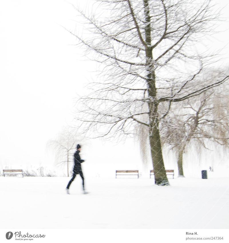 Einmal um die Alster [ Jogger im Schnee] Mensch weiß Baum kalt Sport Landschaft Bewegung Park hell Freizeit & Hobby laufen Lifestyle Fitness Mütze
