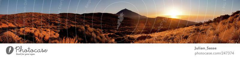 Bergpanorama Umwelt Landschaft Erde Himmel Wolken Sonne Sonnenaufgang Sonnenuntergang Sonnenlicht Sommer Schönes Wetter Pflanze Sträucher Wildpflanze