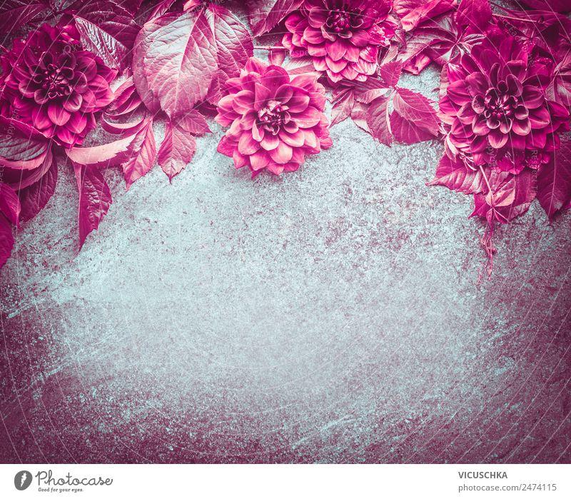 HintergrundRahmen mit magenta Blumen und Blättern Stil Design Natur Pflanze Blüte Dekoration & Verzierung Blumenstrauß Ornament retro rosa Composing
