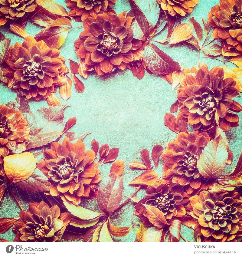Schöne Herbst Blumen und Blätter Hintergrund Rahme Stil Design Feste & Feiern Natur Pflanze Blatt Blüte Dekoration & Verzierung Blumenstrauß Ornament trendy