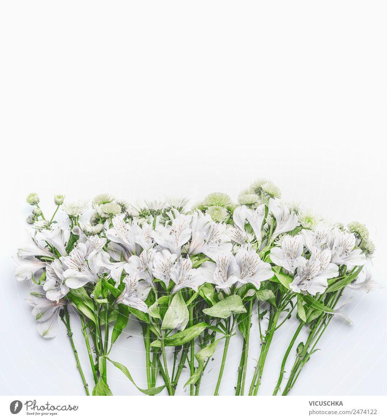 Weiße Blumen auf weiß Stil Design Garten Feste & Feiern Muttertag Hochzeit Geburtstag Natur Pflanze Blatt Blüte Dekoration & Verzierung Blumenstrauß