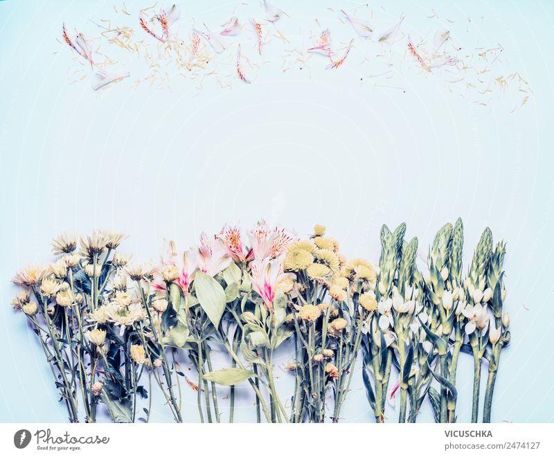 Blumen Hintergund Stil Design Sommer Feste & Feiern Natur Pflanze Frühling Blatt Blüte Garten Dekoration & Verzierung Blumenstrauß gelb rosa Hintergrundbild