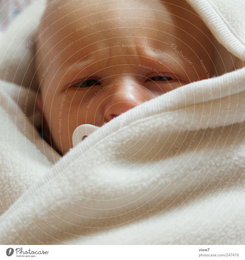 Skeptiker Mensch Kind schön ruhig Kopf Glück Baby Haut maskulin Beginn frisch authentisch Sicherheit einzigartig Warmherzigkeit einfach