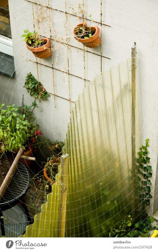 Hinterhof Garten Blumentopf Spalier Pflanze Hofgrün Grenze Zaun Nachbar Ecke privat Erholung Wachstum Grundstücksgrenze Detailaufnahme Bildausschnitt Anschnitt