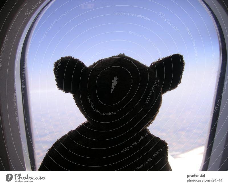 gizmo airborne blau Wolken Flugzeug Symbole & Metaphern Begleiter Glücksbringer