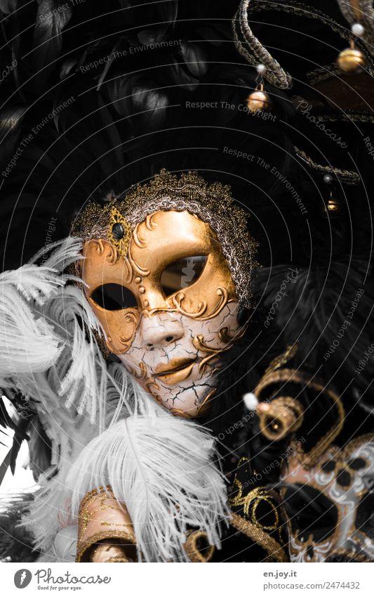 Vollkommen Ferien & Urlaub & Reisen schön Erotik Freude dunkel schwarz Gesicht Stil Party träumen Dekoration & Verzierung elegant Feder Lebensfreude leer Gold