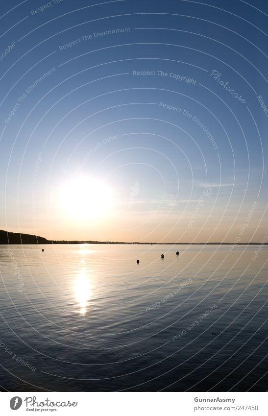 links der Förde Himmel blau Wasser Ferien & Urlaub & Reisen Meer Sommer schwarz Erholung Landschaft Freiheit Küste Horizont Schwimmen & Baden gold natürlich