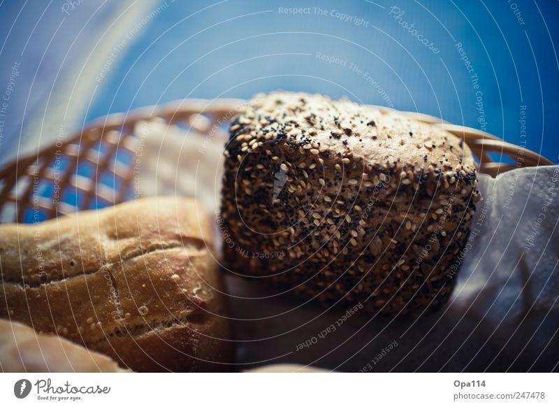 "Körnerbrötchen Lebensmittel Teigwaren Backwaren Brot Brötchen Ernährung Frühstück Büffet Brunch Bioprodukte blau braun weiß ""Nahrung gebacken Korb geflochten"