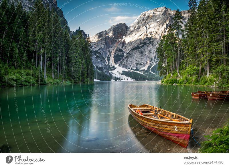 8 Natur Ferien & Urlaub & Reisen Sommer grün Landschaft Sonne Erholung ruhig Wald Berge u. Gebirge Tourismus See Ausflug Freizeit & Hobby Idylle Abenteuer