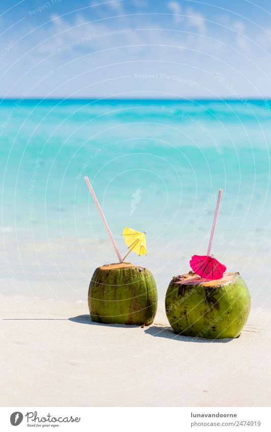 Kokosnussgetränke an einem karibischen Strand Frucht Getränk Alkohol Ferien & Urlaub & Reisen Sommer Meer Natur Landschaft Himmel Küste frisch blau grün türkis