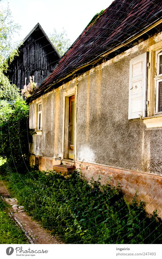 Verwunschen Häusliches Leben Haus Garten Scheune Pflanze Baum Gras Sträucher Dorf Menschenleer Mauer Wand Treppe Fassade Fenster Tür Dach Einfahrt alt einfach
