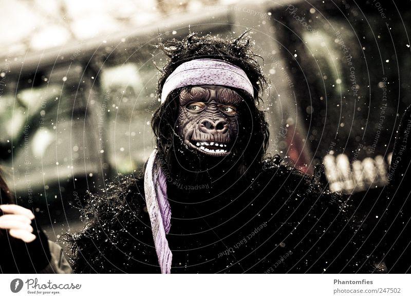 Planet of the Apes Karneval Mensch 1 beobachten frieren außergewöhnlich verrückt Freude Karnevalskostüm Affenkostüm Maske Gedeckte Farben Außenaufnahme Tag