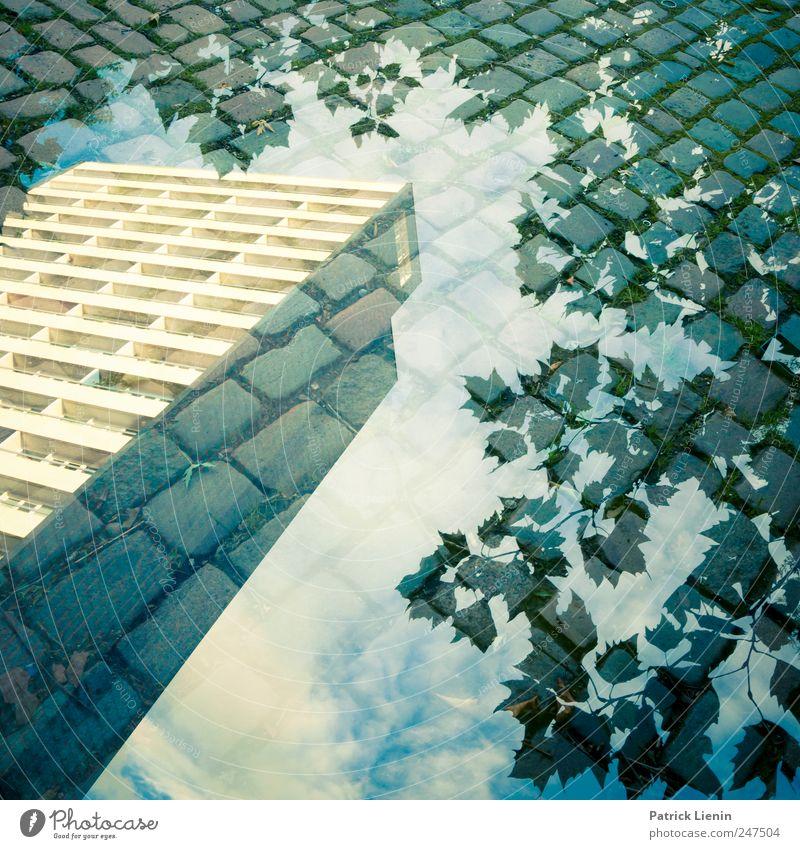 Häuschen im Grünen schön Zufriedenheit Haus Umwelt Natur Landschaft Urelemente Himmel Wolken Wetter Baum Stadt Hochhaus Bauwerk Gebäude Architektur ästhetisch