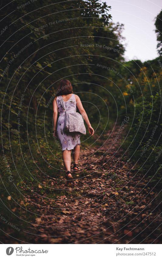 ° Mensch Natur Jugendliche Baum schön Sommer Ferien & Urlaub & Reisen Ferne Wald Leben Erholung feminin Freiheit Berge u. Gebirge Stil
