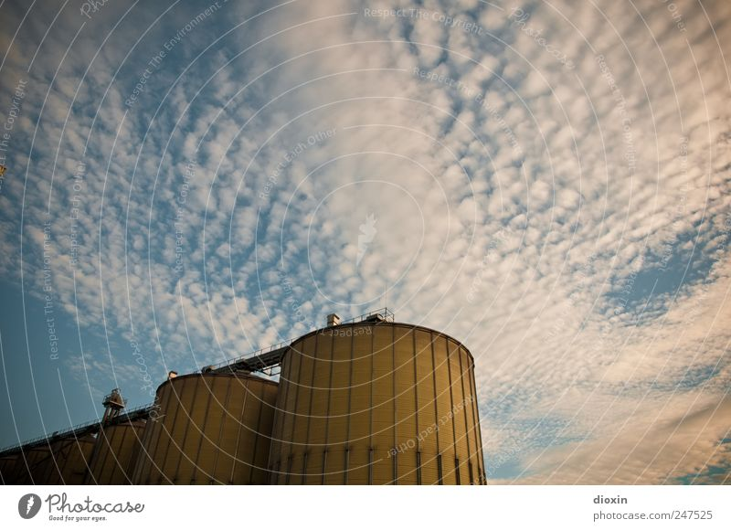 Silos Himmel blau weiß Wolken gelb Metall Deutschland hoch groß Bauwerk Hafen Scheune Industrieanlage gigantisch Stadtrand Silo