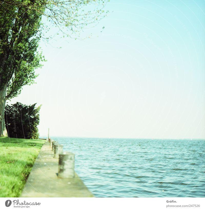 Sommer auf der Insel ruhig Ferne Meer Natur Wasser Himmel Wolkenloser Himmel Horizont Wiese Menschenleer Unendlichkeit blau grün Sehnsucht Einsamkeit Farbfoto