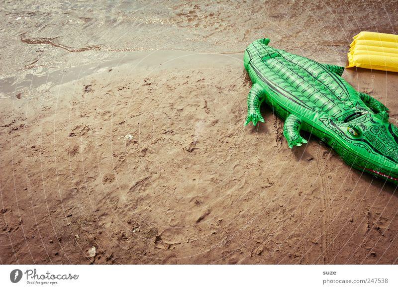 Luftikus grün Sommer Strand lustig Sand Freizeit & Hobby Kindheit Spielzeug Sommerurlaub kindlich Krokodil Luftmatratze