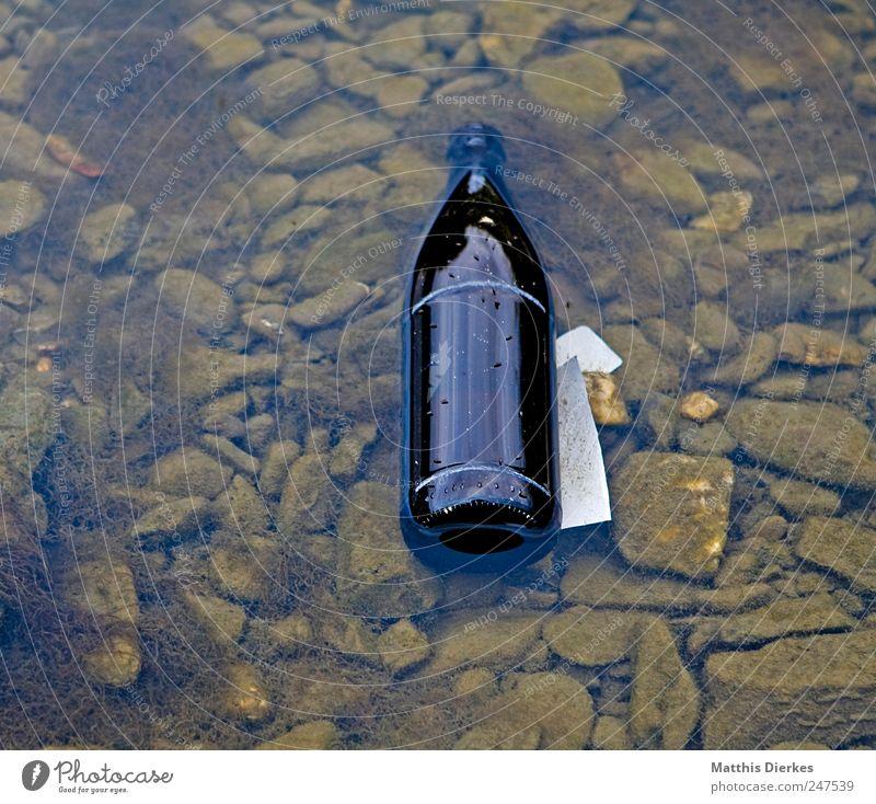 Flasche Umwelt Glas Getränk Bier Müll Umweltverschmutzung Bierflasche Wasser Alkohol achtlos Wasserlache Altglas