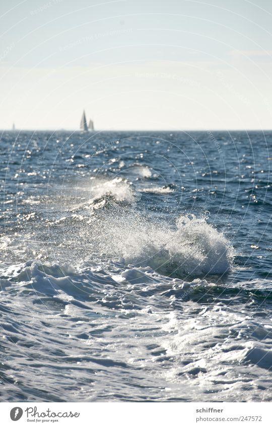 Das habt ihr verpasst! Himmel Wasser Ferien & Urlaub & Reisen Meer Ferne Erholung Wellen Wind Sturm Segeln Schönes Wetter Segelboot Gischt Natur Atlantik Bretagne