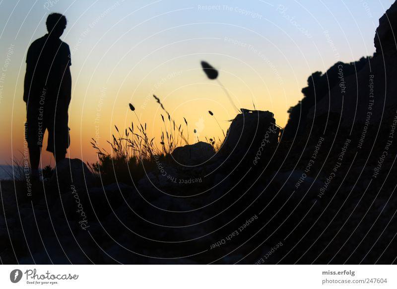 Schattiges Plätzchen Natur schön ruhig Einsamkeit Kraft Horizont ästhetisch maskulin Hoffnung leuchten Neugier nachdenklich Sehnsucht Leidenschaft Leichtigkeit