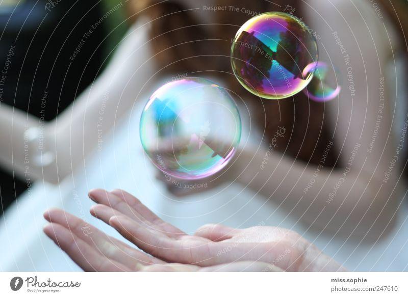 nur einen moment Hand schön Sommer ruhig träumen Farbstoff Zufriedenheit glänzend authentisch rund einfach Wunsch festhalten Schutz Spiegel Vertrauen