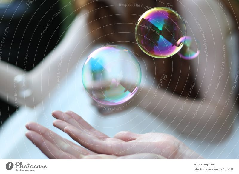nur einen moment ruhig Hand Sommer Spiegel fangen festhalten genießen tragen träumen glänzend schön rund Zufriedenheit Lebensfreude Vertrauen Schutz