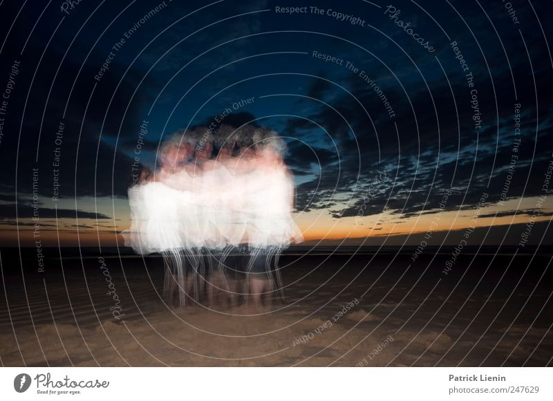 Tanz in die Nacht Mensch Himmel Natur Meer Sommer Strand Wolken ruhig Ferne Erholung Leben Umwelt Landschaft Freiheit Küste Freundschaft