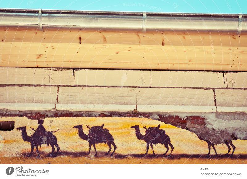 Dakar 2011 Stil Design wandern Haus Himmel Gebäude Mauer Wand Fassade Dachrinne Tier Herde Graffiti Streifen alt dreckig kaputt trist trocken Wärme gelb Verfall