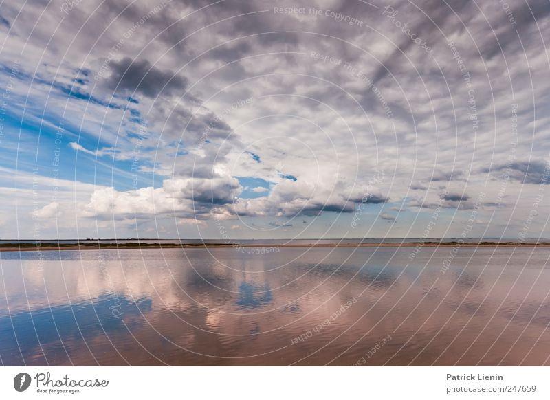 Try not to breathe Himmel Natur Ferien & Urlaub & Reisen Sommer Meer Strand Wolken ruhig Ferne Erholung Umwelt Freiheit Sand träumen Stimmung Wind