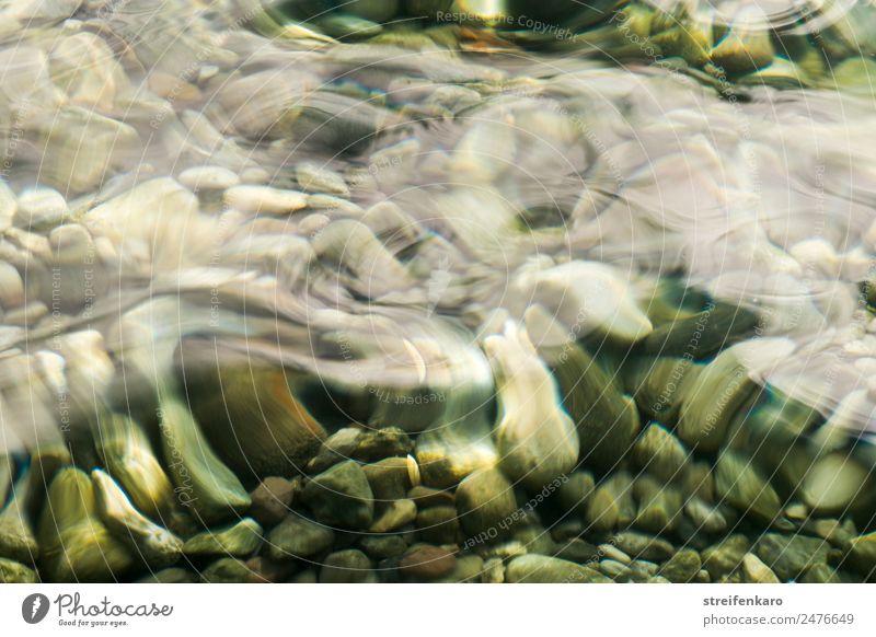 steinig | unter den Wellen harmonisch Erholung ruhig Sommer Strand Umwelt Natur Urelemente Wasser Seeufer Flussufer Bach Stein Bewegung liegen ästhetisch fest