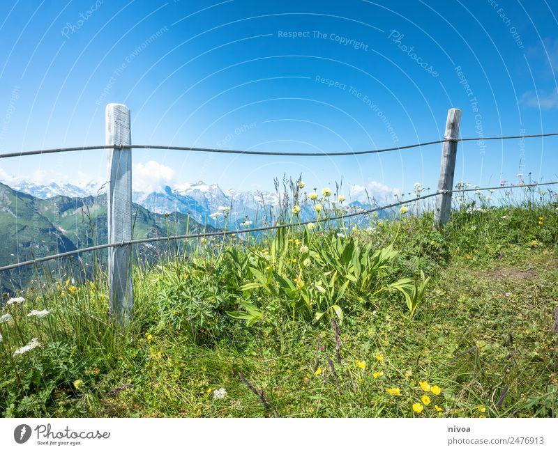 Blick vom Stoos auf die Alpen Ferien & Urlaub & Reisen Ausflug Abenteuer Ferne Freiheit Sommer Berge u. Gebirge wandern Umwelt Natur Himmel Gras stoos Schweiz