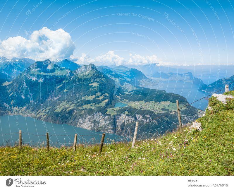 Blick vom Stoos auf den Vierwaldstättersee Himmel Natur Sommer Pflanze Wasser Landschaft Baum Erholung Tier Wolken Berge u. Gebirge Umwelt Wege & Pfade Bewegung