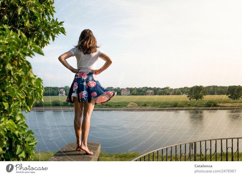 An der Elbe V feminin Junge Frau Jugendliche 1 Mensch Landschaft Himmel Wolken Sommer Schönes Wetter Baum Gras Wiese Flussufer Haus Einfamilienhaus Mauer Wand