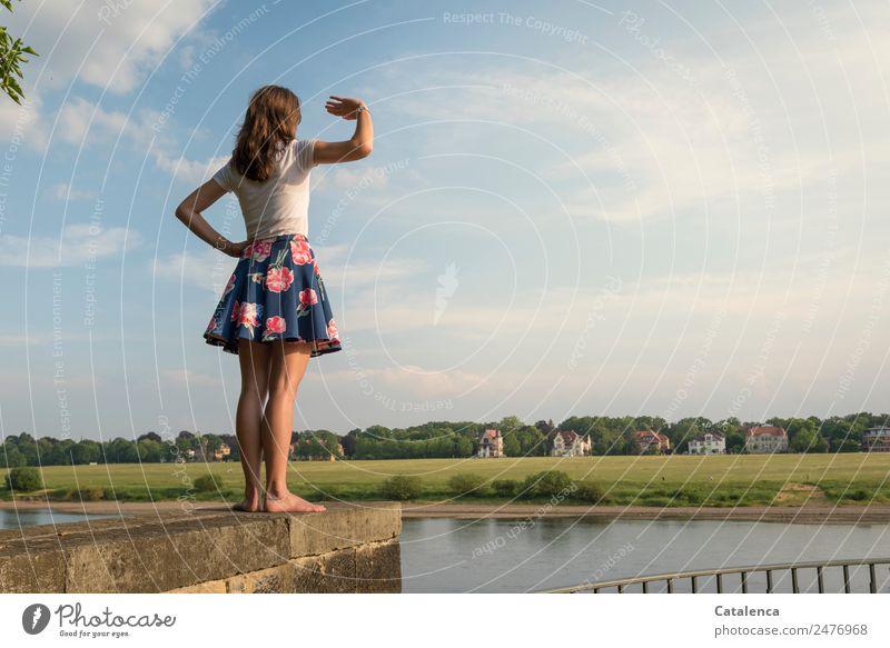 An der Elbe IV feminin Junge Frau Jugendliche 1 Mensch Landschaft Himmel Wolken Sommer Schönes Wetter Baum Gras Wiese Flussufer Haus Einfamilienhaus Mauer
