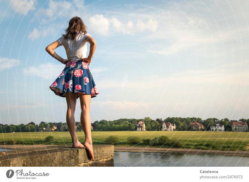 An der Elbe III feminin Junge Frau Jugendliche 1 Mensch Landschaft Himmel Wolken Sommer Schönes Wetter Baum Gras Wiese Flussufer Haus Einfamilienhaus Mauer