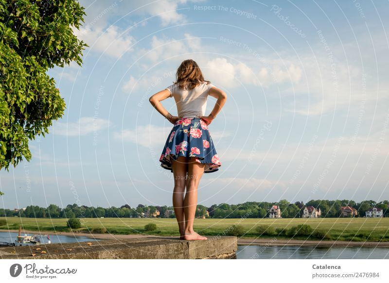 An der Elbe feminin Junge Frau Jugendliche 1 Mensch Natur Landschaft Himmel Wolken Sommer Schönes Wetter Baum Gras Park Wiese Flussufer Haus Einfamilienhaus