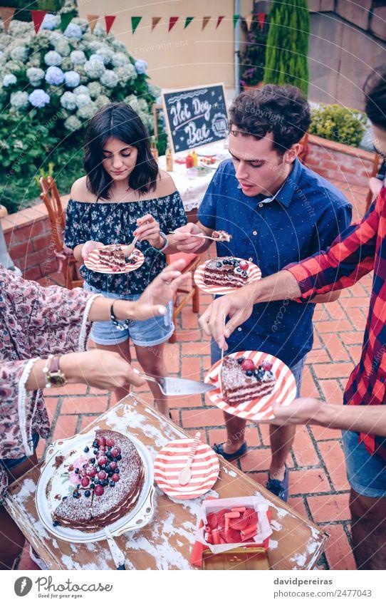 Frau Natur Mann Sommer Hand Freude Essen Erwachsene Lifestyle sprechen lachen Glück Garten Feste & Feiern Menschengruppe Zusammensein