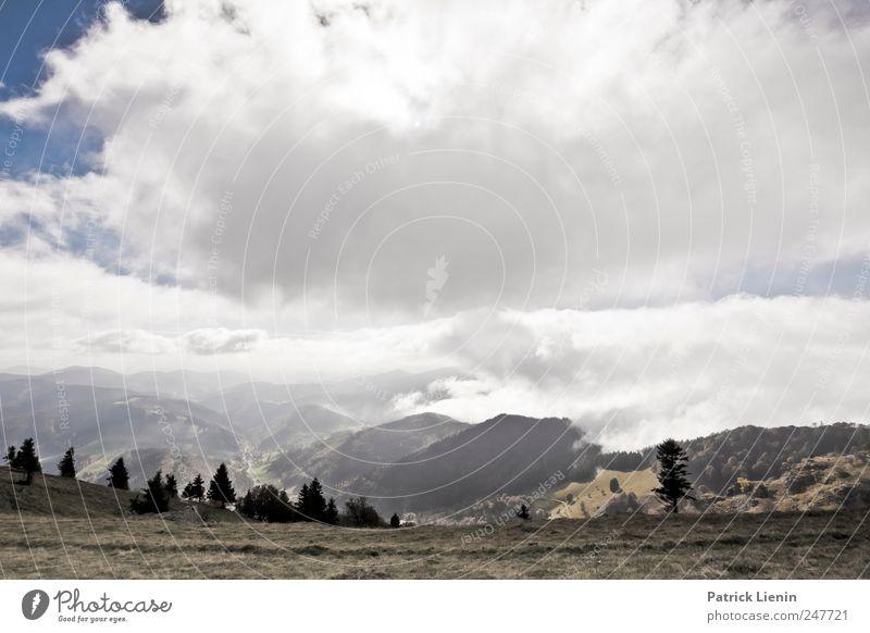 Herbstwandern Himmel Natur Ferien & Urlaub & Reisen Pflanze Landschaft Wolken Ferne Wald Berge u. Gebirge Umwelt Freiheit Horizont Freizeit & Hobby Tourismus Wetter Nebel