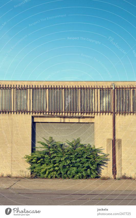 Alles Essig Himmel Natur Baum Blatt Einsamkeit Umwelt Landschaft Symmetrie hässlich Industrieanlage Grünpflanze