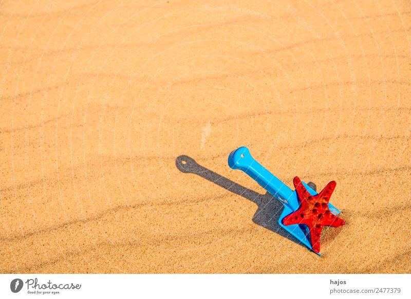 Schaufel und Seestern am Strand Freude Erholung Ferien & Urlaub & Reisen Sommer Kind Sand gelb Tourismus Spielzeug blau rot erholen Kinderspiel spielen sandeln