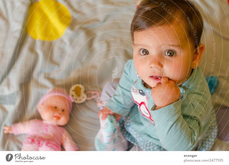 Porträt eines schönen Babys Lifestyle elegant Gesicht Kind Mensch feminin Mädchen Kindheit 1 0-12 Monate Puppe Blick Freundlichkeit Glück lecker natürlich