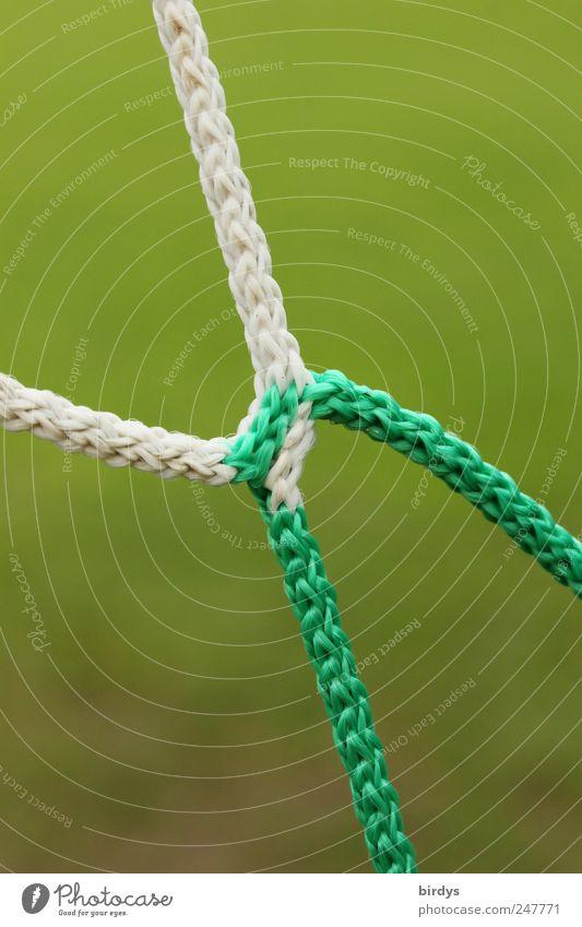 connected weiß grün Seil Netz Verbundenheit Fußballplatz Ballsport Fußballtor Detailaufnahme Synthese dual auseinandergehen Spleißen Nylonschnur