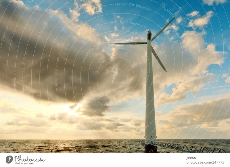 Offshore Umwelt Wasser Himmel Wolken Sonnenlicht Schönes Wetter Wind Meer See hell blau gelb schwarz Energie Farbe Klima Windrad Energiekrise